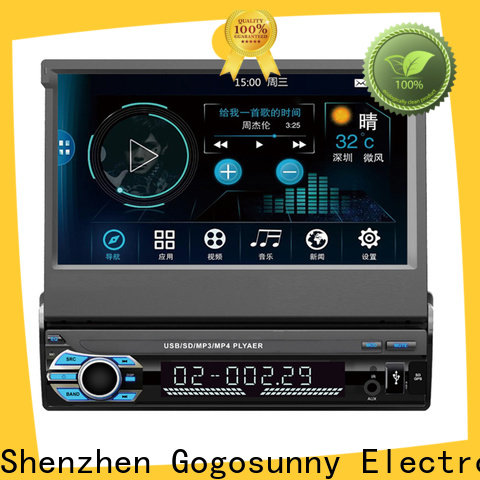 Gogosunny customize car mp5 china price for auto